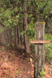 HikingTrail2
