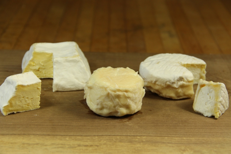 Three bloomies, left to right - cow milk rennet curd, lactic goat geo ripened, and hybrid, cow curd on top, goat on bottom